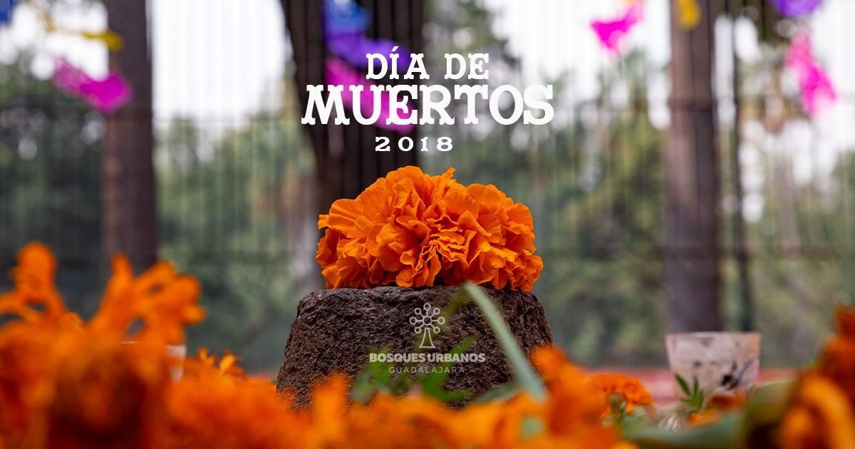 Día de muertos en Colomos